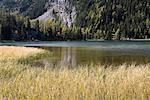 Lac Grizzly, prés Sunshine, Mount Assiniboine, Parc National Banff, Alberta, Canada