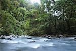 La Fortuna Waterfall, Alajuela Province, Costa Rica