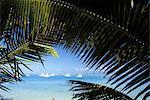 Vue sur la mer de Grand Baie, Ile Maurice