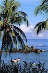 Paysage côtier des Seychelles, Praslin,