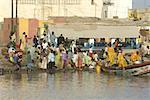 Port de Saint-Louis, Sénégal, retour de pêche