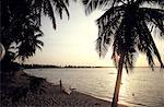Togo, lake Togo, sunset