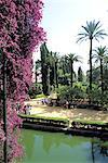 Spain, Andalusia, Seville, Alcazar gardens