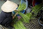 Woman Sorting Long Beans, Ben Thanh Market, Ho Chi Minh City, Vietnam