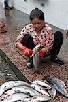 Woman Cleaning Fish, Ben Thanh Market, Ho Chi Minh City, Vietnam