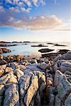 Rocky Coastline Near Fionnphort, Ross of Mull, Argyll and Bute, Isle of Mull, Inner Hebrides, Scotland