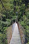 Bridge in Arenal, Alajuela, Costa Rica