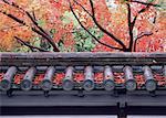Feuilles teintées de rouges et de la clôture traditionnelle japonaise