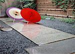 Oilpaper unbrellas