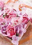 Rose et hortensia