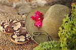 Nature morte de sandales et chapeau pour le soleil