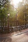 Vélos garés sur le pont, Amsterdam, Pays-Bas