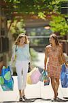 Deux amis se promener à l'extérieur et de porter les sacs.