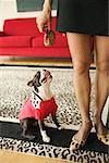Une femme à la mode et son chien.