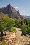 Rochers et rivière, Zion National Park, Utah, Etats-Unis
