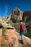 Randonnée dans Zion National Park, Utah, Etats-Unis