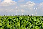 Éoliennes en champ