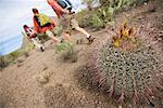 People Hiking in Desert, Saguaro National Park, Arizona, USA