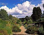 Double Herbaceous Beds, Walled Garden, Castlewellan, Co Down, Ireland