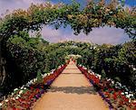 Rose Arches & Path, National Garden Exhibition Centre, Kilquade, Co Wicklow, Ireland
