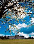 Stormont, édifices du Parlement, Belfast