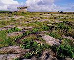 The Burren, Portal Dolmen, Co. Clare, Ireland