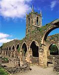 Baltinglass Abbey, Baltinglass, Co Wicklow, Ireland, Cistercian Abbey