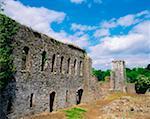 Bridgetown Abbey, Co Cork, Ireland