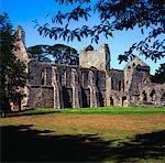 Grey Abbey, Co Down, Ireland, Ruins of a Cistercian Abbey