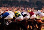 Courses de chevaux, Phoenix Park, Dublin, Irlande
