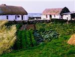 Traditionelle Bauernhöfe, Co. Galway, Irland