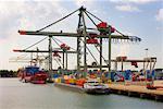 Portiques et cargos au chargement à quai, Rotterdam, Pays-Bas
