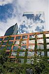 Vine-Covered Building, Chicago, Illinois, USA
