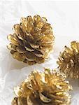 Cônes de pin doré