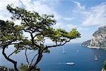 Vue sur Capri depuis Belvedere di Migliara, golfe de Naples, en Campanie, Naples, Italie