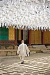 Buddhist Monk under Lanters, Bongeunsa Temple, Seoul, South Korea
