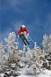 Skieur sautant par-dessus la neige couvertes d'arbres