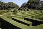Elaborate hedge maze