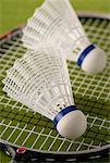 Zwei Badminton-Birdies auf Racquet