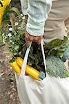 Frau, die Stoff-Tasche für Lebensmittel