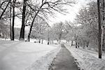 Stadtpark im Winter, Toronto, Ontario, Kanada