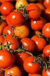 Organic British Vine Tomatoes