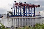 Expédition des grues sur le fleuve Elbe Hamburg, Allemagne