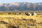 China, Xinjiang, north of Hami, nomad camp