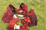 China, Qinghai, Tibetan young novice studying