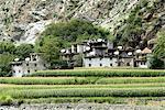 China, Sichuan, between kangding and Danba, Tibetan village