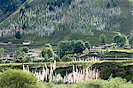 Drapeau de prière tibétains de Chine, Sichuan,