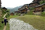 Chine, Guizhou, village Xijiang, logement de rizière