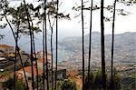 Portugal, Madeira, Funchal, vue générale