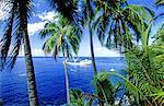 Polynésie, archipel des Marquises, île de Fatu Hiva.